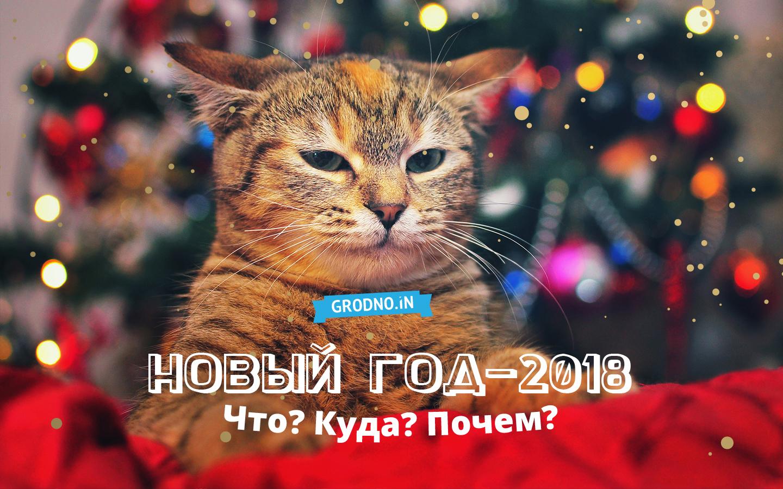 Новый год в гродно